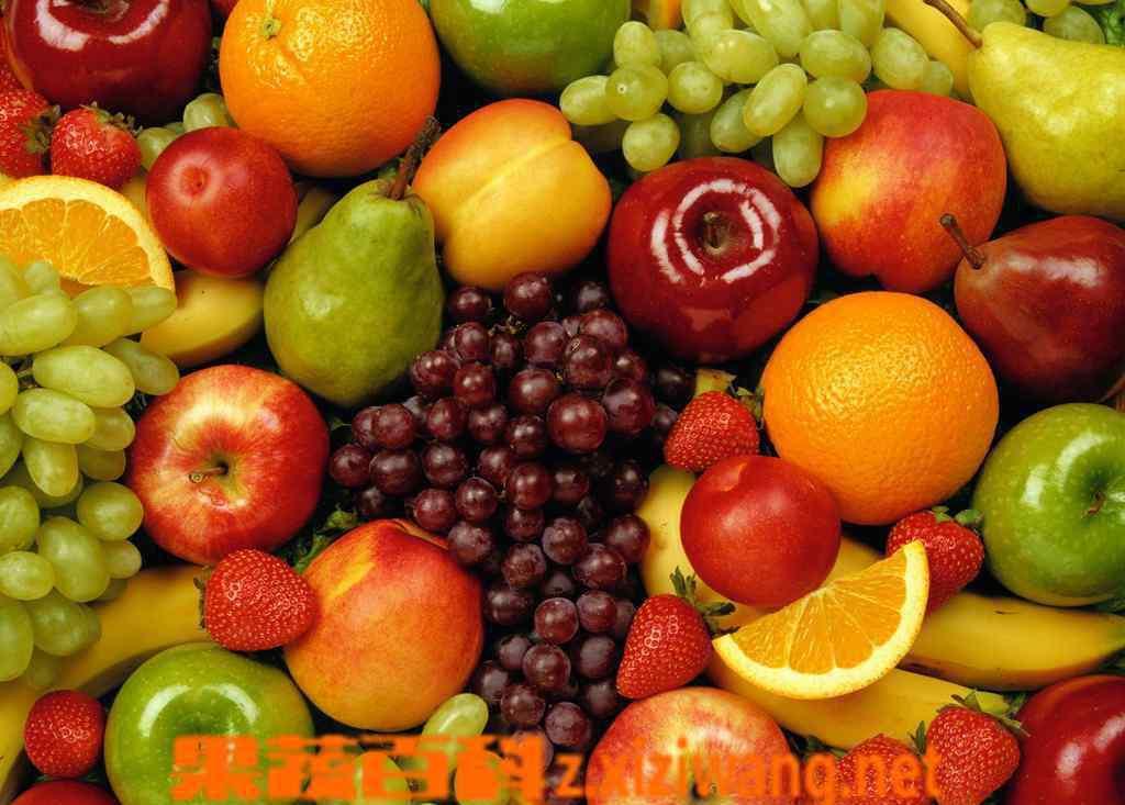 护肝的食物有哪些 哪些养肝食物,对养肝有益的食物