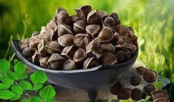 辣木籽怎么吃 辣木籽怎么吃 辣木籽的食用方法